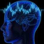 Программируем мозг